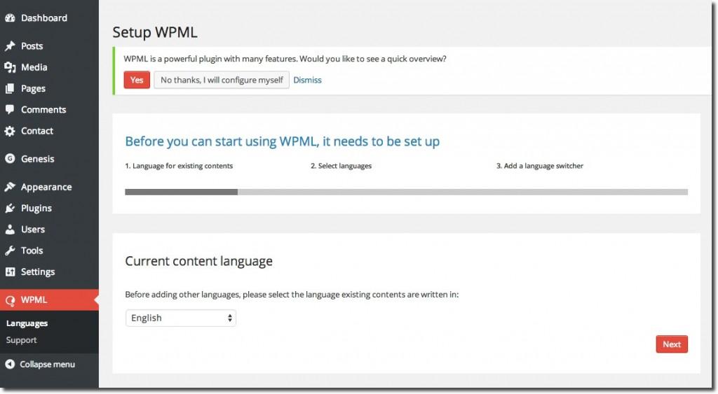 Setup WPML 1