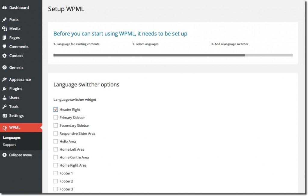 Setup WPML 3