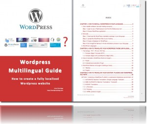 Wordpress Multilingual Guide (Pdf)