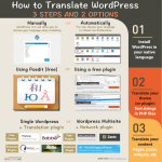 How to translate WordPress: 3 steps and 2 options [Infographic]