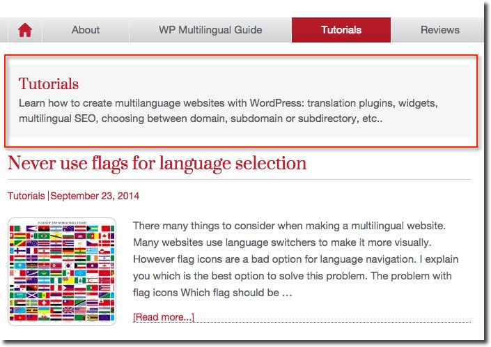 WordPress Multisite: How to Make a Multilingual Website
